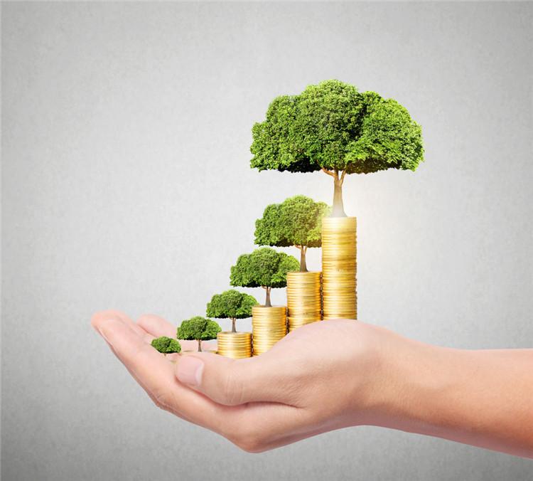 企业税贷需要什么标准